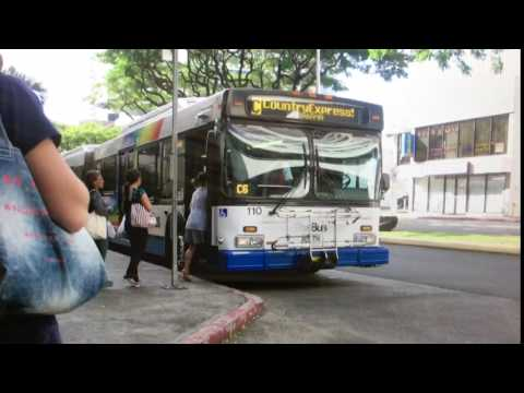TheBus Honolulu 2002 NewFlyer D60LF #110 Route C Picture