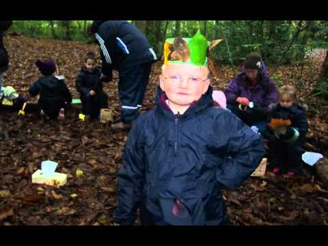 AUTUMN ACTION FOREST SCHOOLS