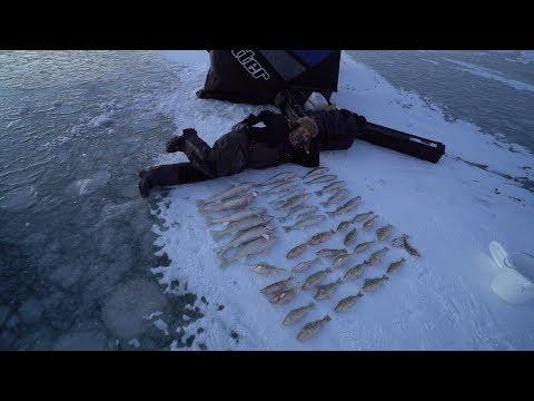 Amazing Multi Species Ice Fishing Action!!