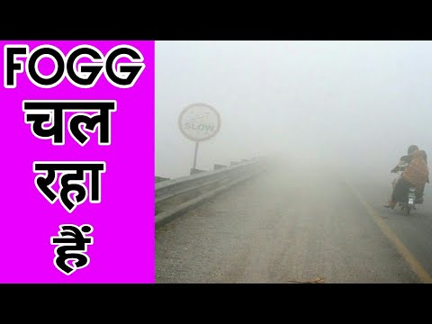 Fog continues in north india weather news