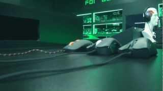Сравнение игровых мышек SteelSeries и Razer
