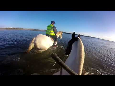 Horseriding through Galway  city!