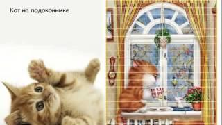 Забавные кошки Алексея Долотова