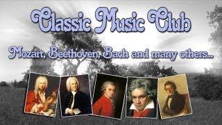 Klassische Musik - Classical Music for Relaxation - Bach - Brandenburgisches Konzert Nr. 4 Allegro BWV 1049 - Brandenburg Concerto Johann Sebastian Bach