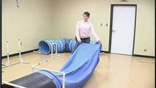 Dog Agility Exercises : Dog Training Obstacles: The Chute