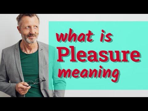 Pleasure   Meaning of pleasure