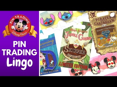 DISNEY PIN TRADING LINGO | All you need to know about Disney Pins!