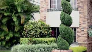 El escultor de jardines