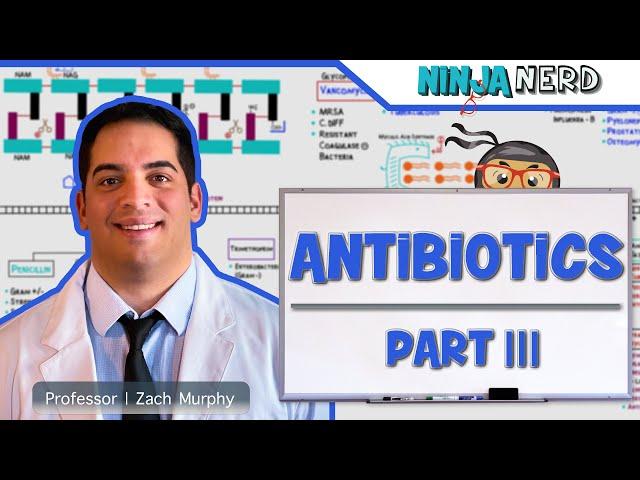 Antibiotics: Protein Synthesis Inhibitors | Part 3