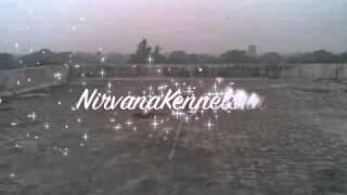 Basic Obedience Nirvana Kennels Delhi