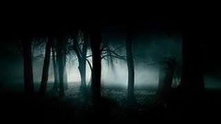 Трейлер к фильму ужасов  Очень страшное кино