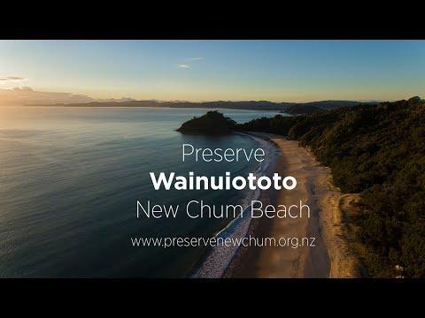 Preserve New Chum Beach, Coromandel, New Zealand.