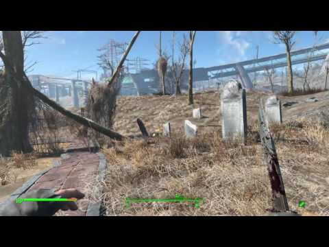 Fallout 4 - Where to find Carrot Flower