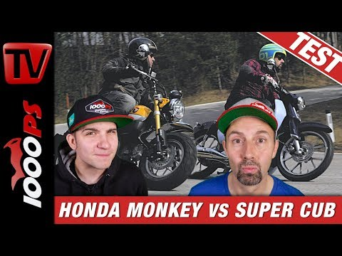 Honda Monkey Vs. Super Cub - Welches 125er-Funbike Hat Den Besseren Style?
