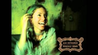 Watch Ani Difranco Seeing Eye Dog video