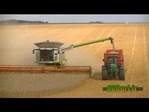 XXL HARVEST - 2 CLAAS Lexion 780 dans le blé en 2013