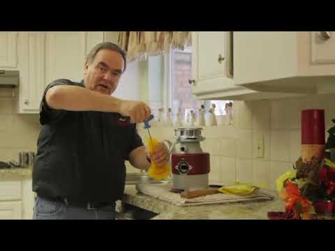 how to clean garbage disposal