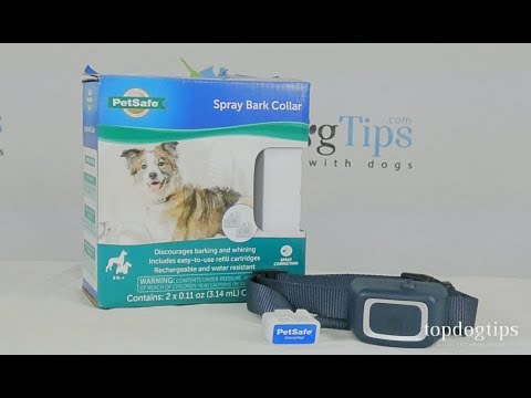 PetSafe Spray Bark Collar For Dogs Review