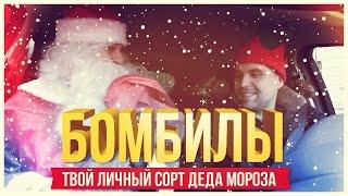 БОМБИЛЫ: Твой личный сорт Деда Мороза