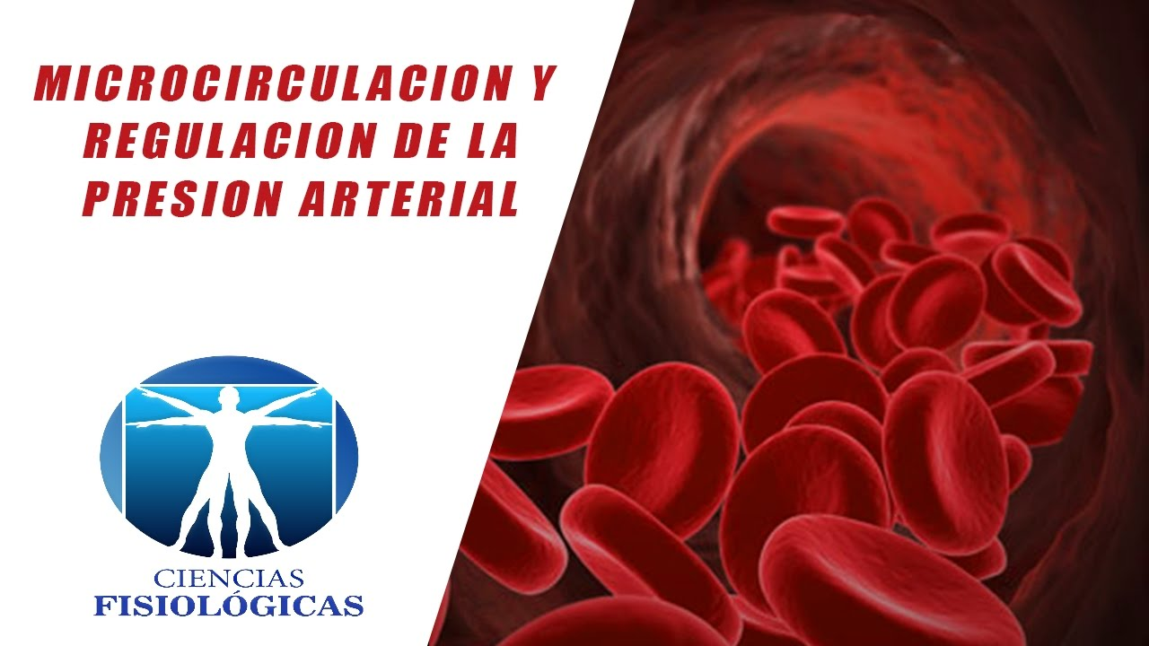 Sitio web notable  Presión arterial normal le ayudará a llegar allí