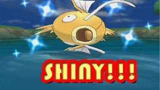 Shiny Magikarp LIVE REACTION! (105 Chain, 500+ Encounters)