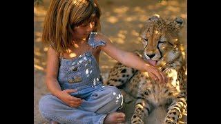 Это надо видеть! Что делают дикие животные с маленькими детьми!