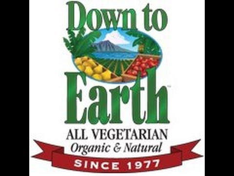 Down To Earth- Vegetarian and Organic Grocery Store Review