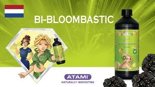 ATA NRG Bi-Bloombastic   Animation (NL)