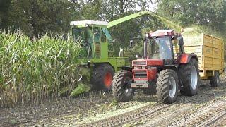 Classic harvesting Beckum 2019! (2/2)