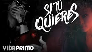 Darell & Sinfonico - Si Tu Quieres [Lyric Video]