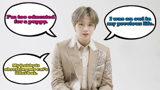 Download Mp3 Things Kang Daniel Says That Sound Like Fake Subs But Aren t