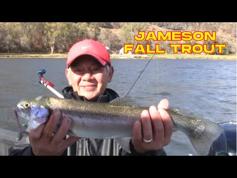 Jameson Lake Fall Trout