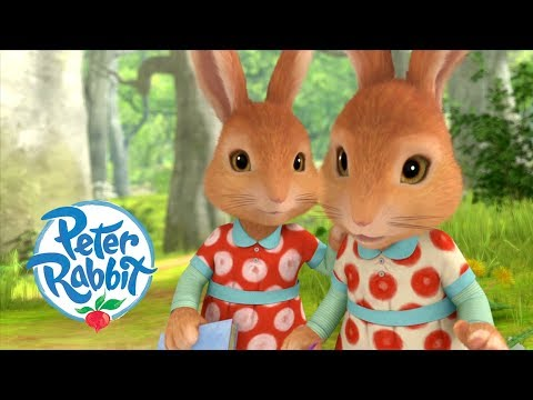 Peter Rabbit - Exploring with the Twins | Cartoons for Kids