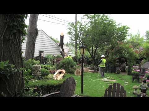 June 21, 2011 Tornado Damage Mount Prospect