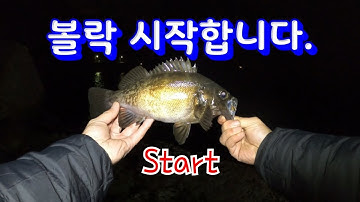 [볼락 낚시] 오랜만에 볼락 손맛!!G렸죠!!(rockfish,Ulleungdo,Sea Lure Fishing)