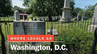 Hidden history in Washington, D.C.'s Congressional Cemetery | Where Locals Go