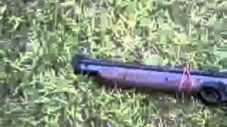 rabbit hunting with pellet gun
