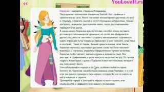 Игра Одевалка Чародейки для девочек