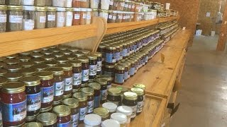 Sauder Farm Country Market - Elkton, KY (Amish / Mennonite)