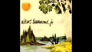 Albert Hammond Jr - Well.. All Right