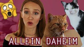 Katzen allein daheim | Mirellativegal
