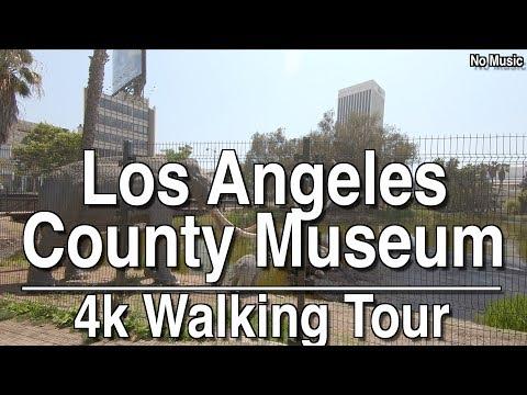 LACMA And La Brea Tar Pits Walking Tour | 4k Dji Osmo | No Music
