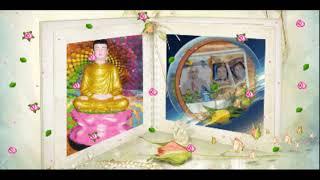 ❤Sáng Mở Trí Tuệ Ơn Đền Đáp 卐 Phật Dạy Về Đạo Làm Con Phật Dạy ❤