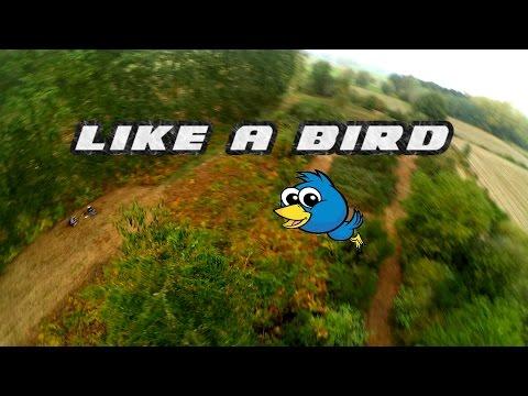 Like a bird    FPV Freestyle