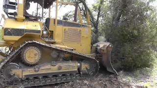 CAT D5M Pushing Cedar
