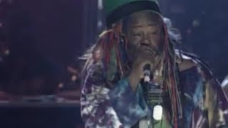 George Clinton & the P-Funk All-Stars - Something Stank And I Want Some / Booty (Official)