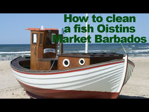 How to clean a fish barbados oistins cleaning flying for How to clean a fish