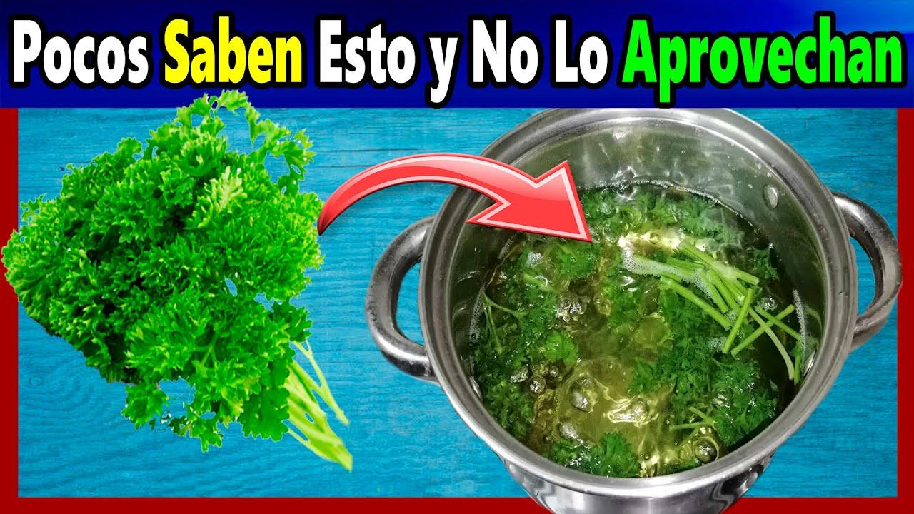 Desintoxica tu Cuerpo, Destapa Las Venas Tapadas Por la GRASA, Elimina los gases y Mas.