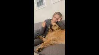 """Dog Plays With Girl """"Catch the Finger in Mouth"""""""