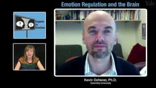 Repeat youtube video Experts in Emotion 14.2 -- Kevin Ochsner on Emotion Regulation and the Brain